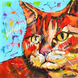 Rode Kat